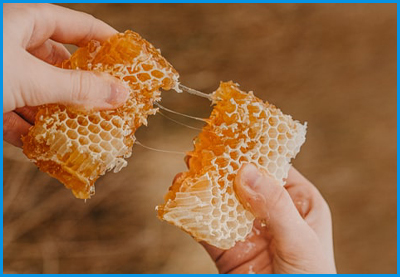 honey_production